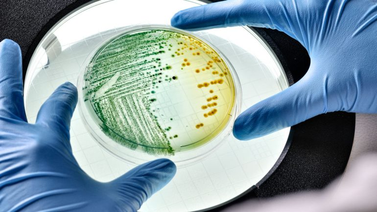 Live bacteria 'program' for scientists to store data    Science
