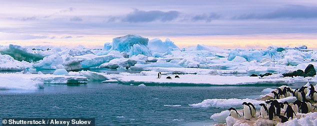 The study found that the gradual melting of icebergs in Antarctica away from the frozen continent could be the driving force that plunges Earth into a new ice age.  Stock image